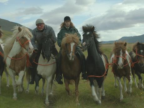 Des chevaux et des hommes ©Hrossabrestur ehf 3