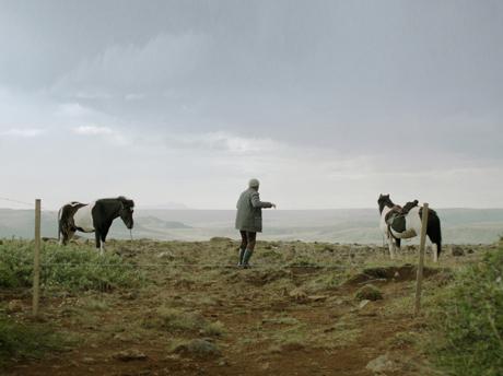 Des chevaux et des hommes ©Hrossabrestur ehf
