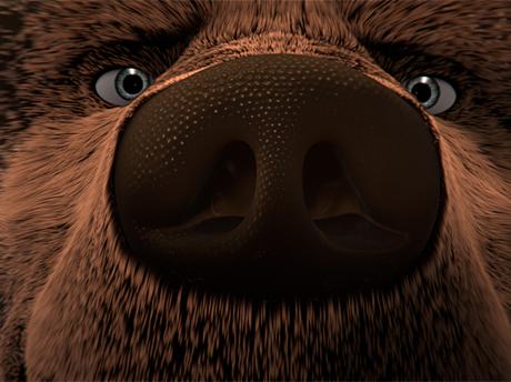 l'ours montagne 2